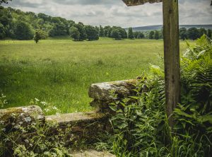 Walk the South Tyne Valley