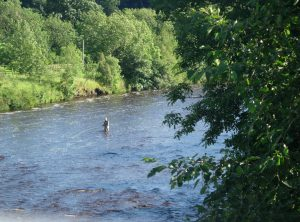 Fishing near Wydon Farm