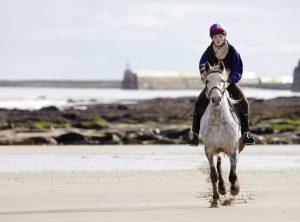 Horse Riding near Seahouses